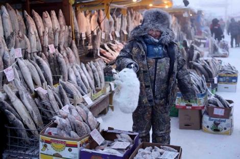 Selvaggina-ghiacciata-nel-mercato-del-pesce_oggetto_editoriale_620x465