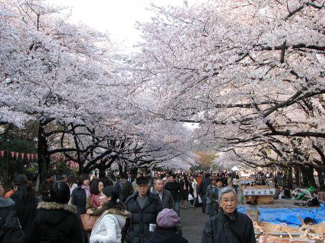 1280px-Ueno_park