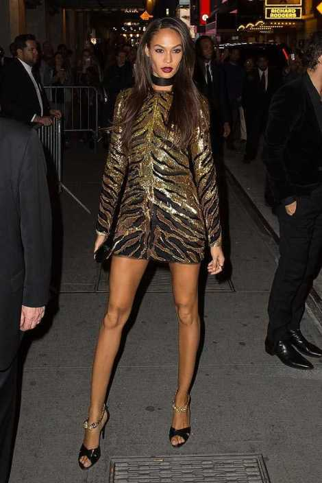 joan-smalls-met-gala-2015-after-parties-24__large